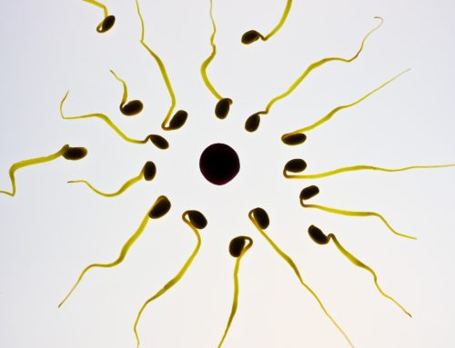 What to Expect in Your Fertility Acupuncture Treatment